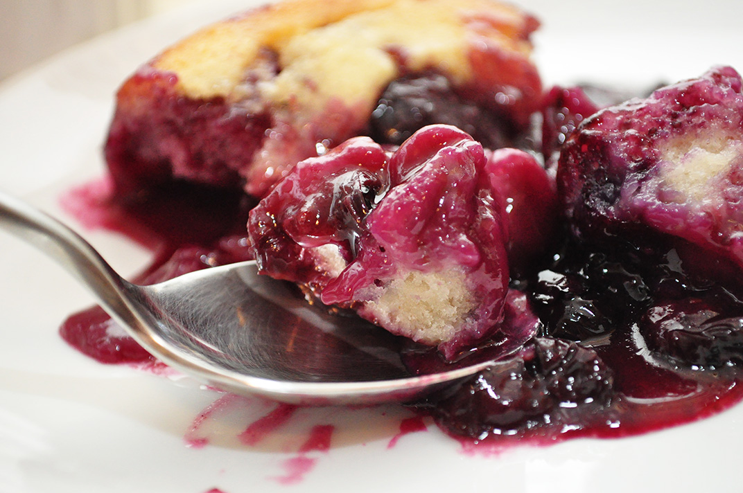 Blueberry Port Cobbler | Jenna's Everything Blog